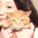 Asuka_Saito