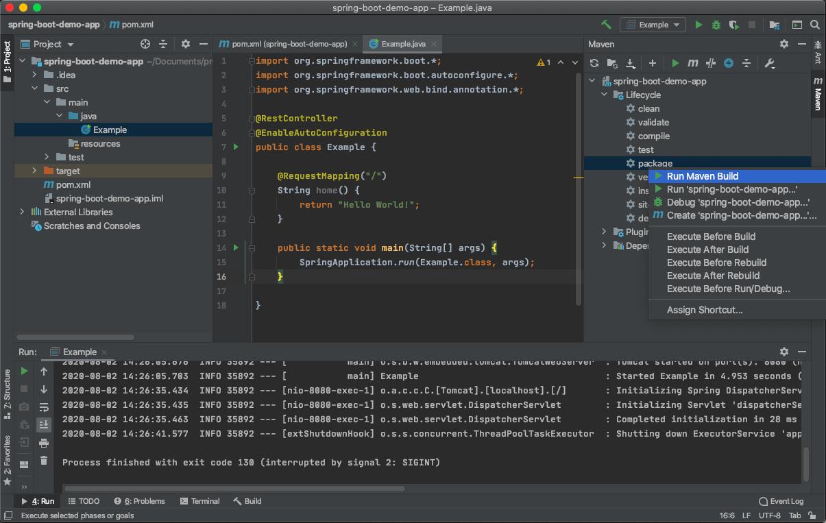 intelliJ_build.png